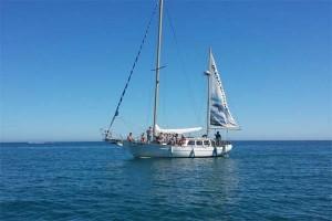 OceanCruiser02_PuertoMarinaCharters